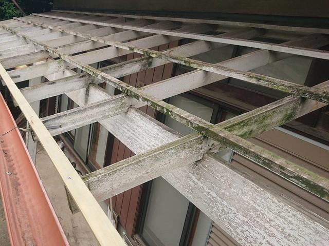 テラス屋根 波板撤去